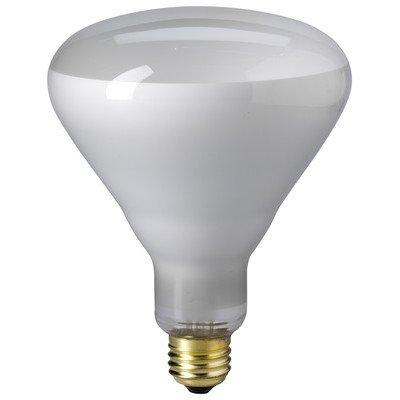 Br 25 Flood Light Bulbs in US - 3