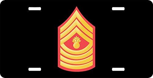 USMC E-9 Master Gunnery Sergeant Red Gol - Master Gunnery Sergeant Usmc Shopping Results