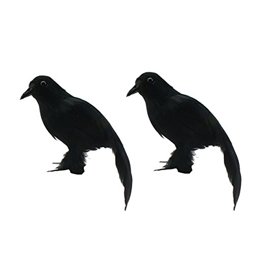 XONOR Halloween Realistic Looking Birds Black Feathered Crows Halloween Prop Décor, Out-Door or Indoor Decoration (Pack of -