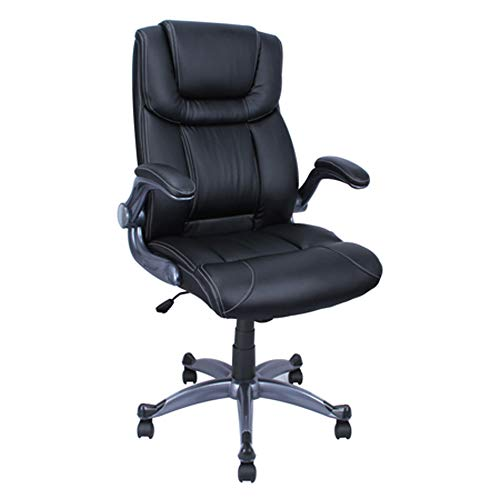 ALEKO ALC2380BL 21 x 28.5 Inch Back PU Leather Executive High Back Ergonomic Office Desk Chair Ergonomic Computer Home Black