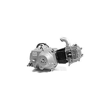 Lifan - Motor Lifan 110 cc - Semi automático Dirt Bike/Pit Bike/Mini Moto: Amazon.es: Coche y moto