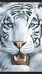 White Tiger Huge Face Velour Beach Towel