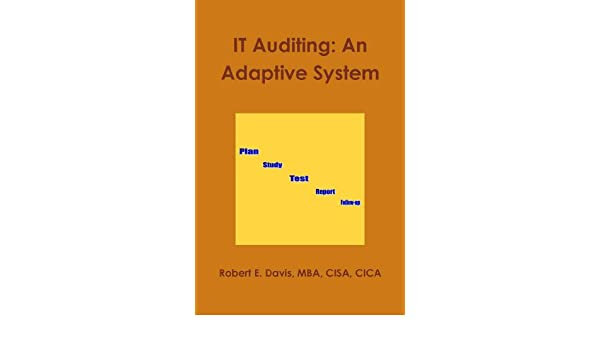 Amazon It Auditing An Adaptive System Ebook Robert E Davis