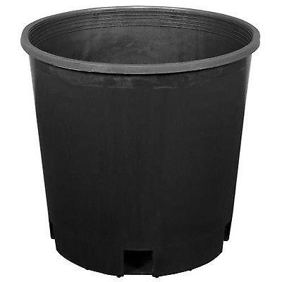 2 gallon plastic pots - 2