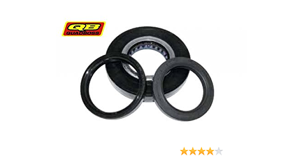 Arctic Cat 500 FIS 4x4 Auto /& Manual 2004 Front Differential Bearing//Seal Kit