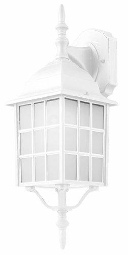 (Trans Globe Lighting 4420-1 WH Outdoor San Gabriel 19.5