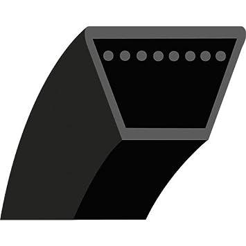 5lk68: correa liso trapezoidal para cortacésped (autoportées ...