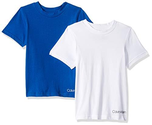 - Calvin Klein Boys' Little 2 Pack Crewneck T-Shirts, Victoria Blue, Classic White, Large-12/14