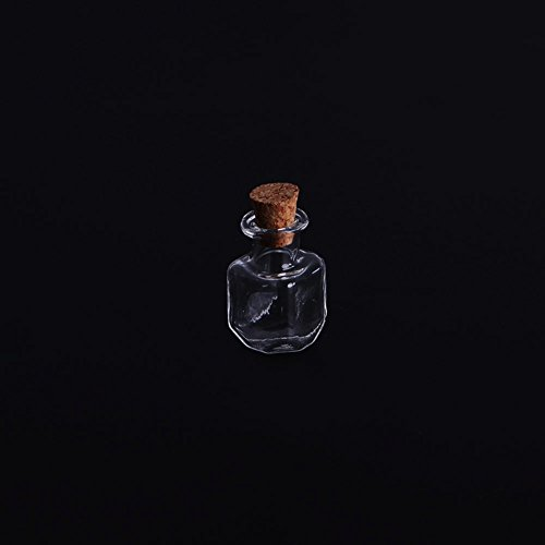 LAYs 5pcs Small Empty Glass Wish Bottle Vial Pendant Transparent for Perfume Drifting Bottle Dried Flower Beads (10#)