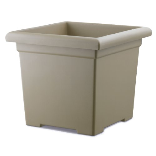 Akro-Mils ROS12500A34 Accent Square Planter, Sandstone, 12-1/2-Inch