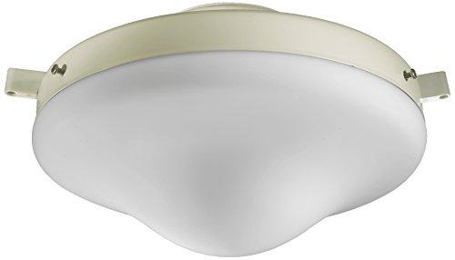 Quorum International 1377-867 Wet CFL Opal Light Kit, Antique White