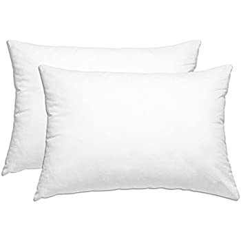 Amazon Com Gusseted Quilted Pillow Queen 2 Pack Hypo