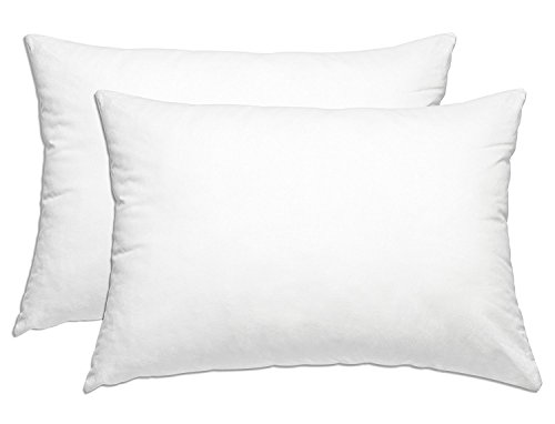Smart Home Bedding Super Plush Pillow Dust Mite Resistant Down Alternative (Queen/Standard, 2 Pack)