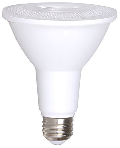 100W Indoor Flood Light Bulb - 6