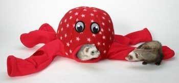 Marshall Ferret Octo-Play - Ferret Toy Shopping Results
