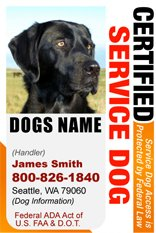 "PERSONALIZE Dean and Tyler ""CERTIFIED SERVICE DOG"" ID Badge – 1 Dog's Custom ID Badge – Design#1- Vertical., My Pet Supplies"
