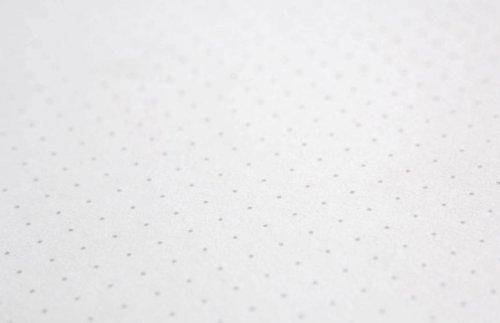 Behance Dot Grid Book (8.5
