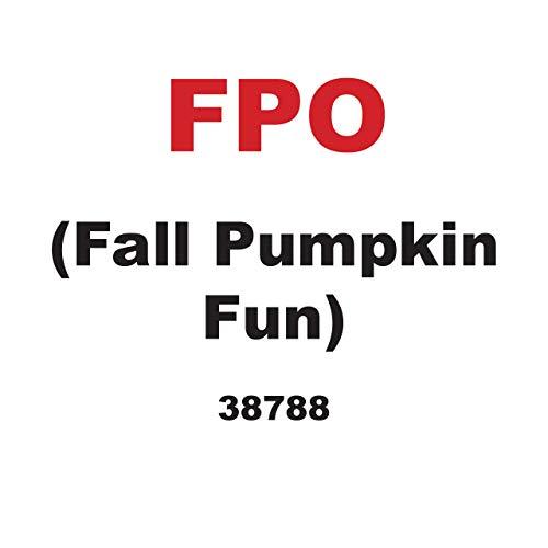 Diversión con calabazas en otoño / Fall Pumpkin Fun (Diversión En Otoño / Fall Fun) (Spanish Edition)