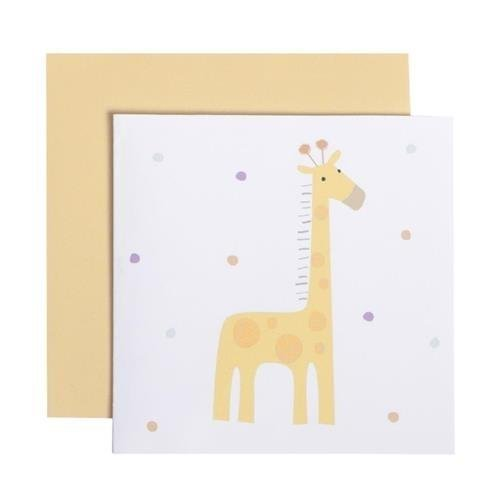 C.R. Gibson Set of 2 Gift Enclosure Cards, Includes Color Coordinated Printed Envelopes, Measures 3 x 3