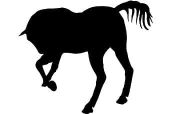 Cola negra cara caballo, caballo adhesivo - 50cm Altura - 50cm Ancho - Negro Vinilo