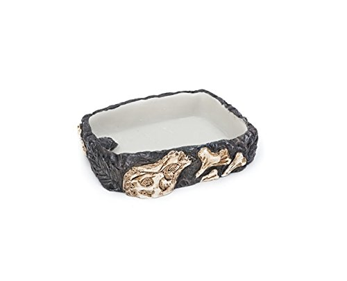 Our Reptile & Amphibian Fossil Rock Dishes Make PERFECT Food & Water Feeding Bowls GUARANTEED!! (Medium)