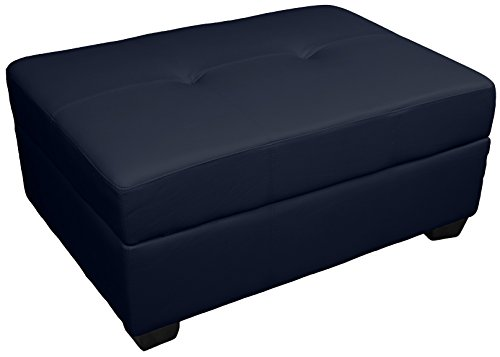 Epic Furnishings Vanderbilt 36 by 24 by 18-Inch Storage Ottoman Bench, Leather (Navy Blue Storage Ottoman)