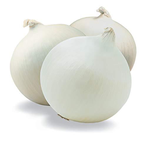 Crystal White Wax Onion Seeds, 200+ Premium Organic Heirloom Seeds, ON SALE, (Isla's Garden Seeds), Non Gmo, Survival Seeds, 90% Germination