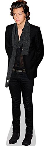 Harry Styles (Scarf) Life Size Cutout