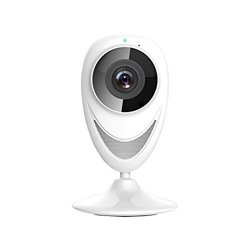 proisland Wifi Globe Panoramic Camera for Home Security, Bab