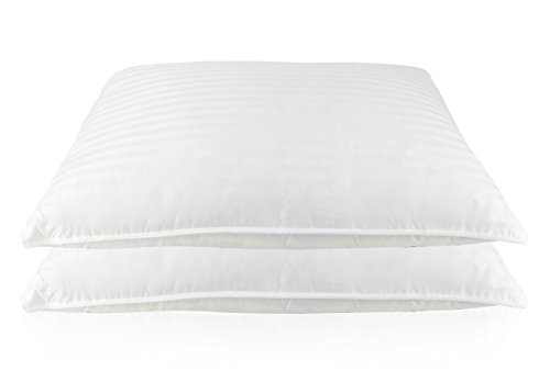 Set of 2, Luxury Goose Feather and Down Bed pillows (Standard)
