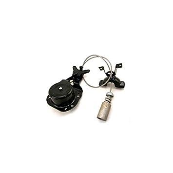Cabestrante para rueda de repuesto para LAND ROVER - lr064520: Amazon.es: Coche y moto