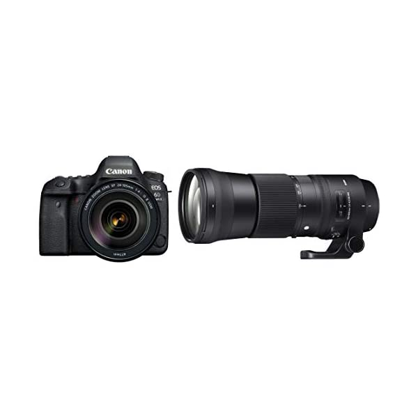 RetinaPix Canon EOS 6D Mark II 26.2MP Digital SLR Camera with Canon EF24-105 mm and Sigma 150-600 mm Lens