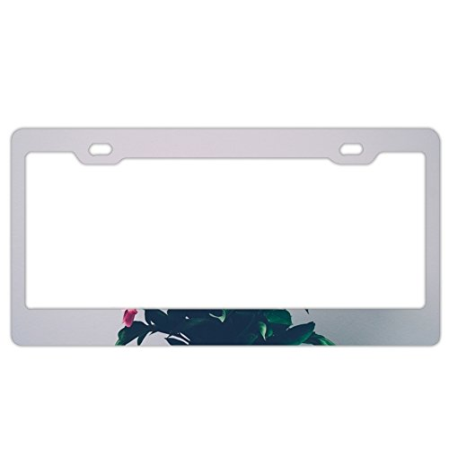 (fffvv Fashion Peonies Bouquet Art Car Accessories Metal License Plate Frame (New))