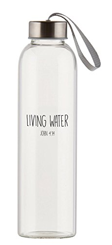 Living Water Clear 21 Ounce Glass Travel Water Bottle with Screw-Top Lid]()