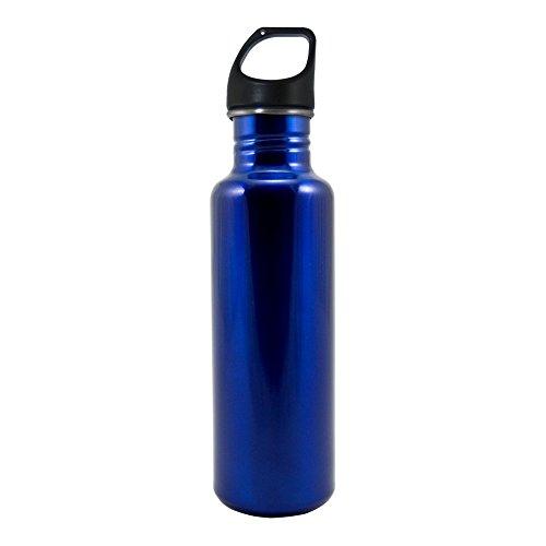 Liquid Logic Excursion Stainless Bottle