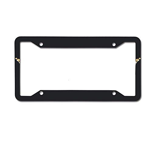 Jackie Prout ss Beautiful Vintage Venetian Carnival Mask Silver and Gold Precious License Plate Frame Holder Aluminum Car Tag Frame 4 Hole and Screws