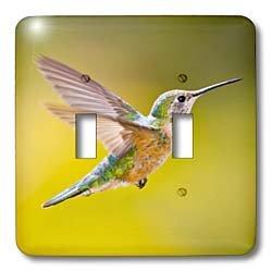 - 3dRose lsp_88845_2 Colorado, Summit Co, Heeney, Rufous Hummingbird Us06 Bja0086 Jaynes Gallery Double Toggle Switch