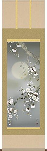 掛け軸-夜桜/緒方葉水(尺五桐箱風鎮付き緞子)花鳥画掛軸 B0123KWRVO