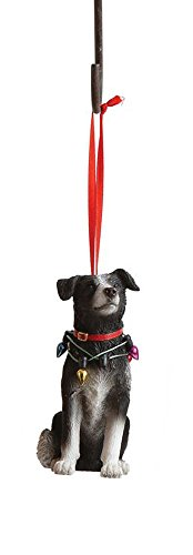 - Creative Co-op Border Collie Dressed in Christmas Lights Hanging Christmas Ornament