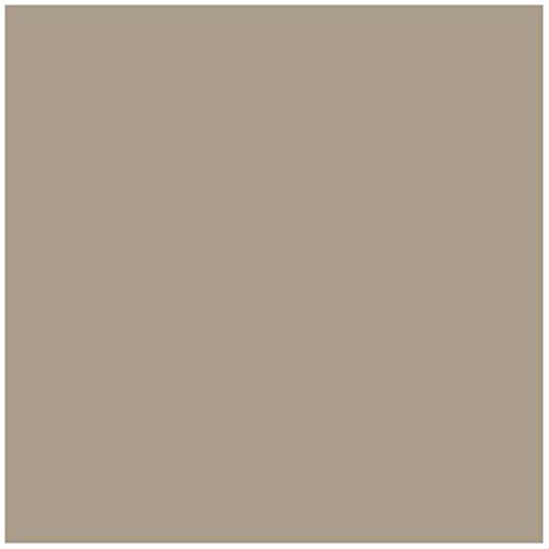 (American Olean Tile Q06661A Quarry Fawn Gray Abrasive Tile, 6