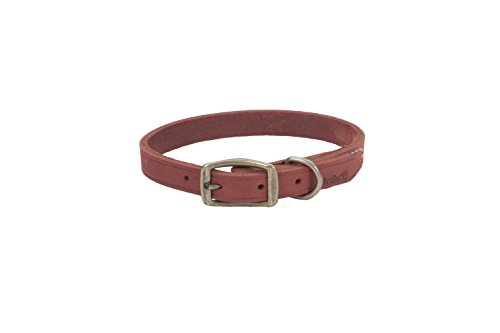 Dog Collar Red Brick (Coastal Pet Products Circle T Rustic Leather Town Dog Collar, 3/4
