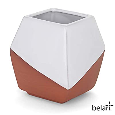Belari Geometric Planter - Terra Cotta Plant Pot - Modern Ceramic Planter Vase - Minimalist Planter Flower Pot for Succulents, Air Plants, and Cacti (Medium): Home & Kitchen