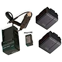 2 Batteries + Charger for Panasonic HDC-HS20P, Panasonic HDC-HS20PC, Panasonic HDC-HS100, Panasonic HDC-HS100K