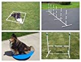 Agility Gear Starter Package with Wobble Board