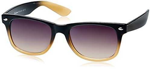 Rockford Wayfarer Sunglasses (Black and Brown) (RF-074-C8)
