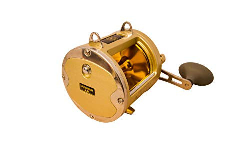 Coastal Fishing Explorer 2.0 Conventional Reel | Gold | 1 Year Warranty