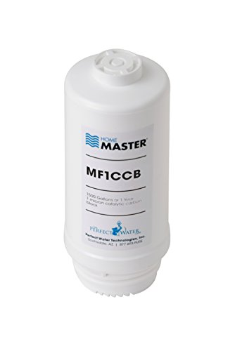 Home Master MF1CCB Mini 1CCB Replacement Filter, White by Home Master