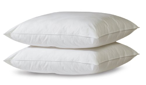 BioPEDIC 2-Pack Bed Pillows with Built-In Ultra-Fresh Anti-Odor Technology, Jumbo, White - Bed Pillows 2 Pack