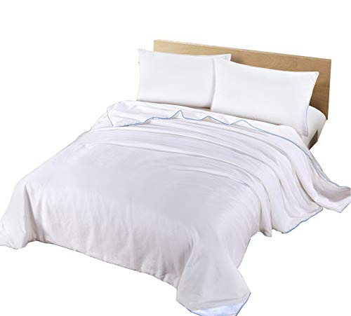 Silk Camel Luxury Allergy-Free Comforter/Duvet Filling with 100% Natural Long Strand Mulberry Silk for Summer Season - Queen ()