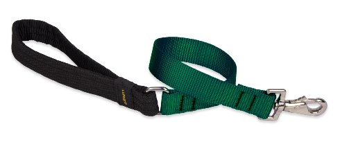 Lupine 1-Inch 2-Feet Traffic Lead, Green, My Pet Supplies